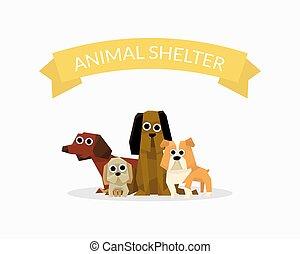 aide, affiche, abri, chouchou, chien, illustration, adoption, donation, vecteur, soin animal, bannière, gabarit