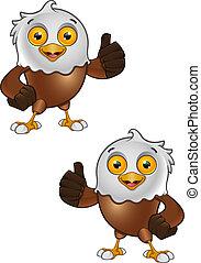 aigle, 3, chauve, -, caractère