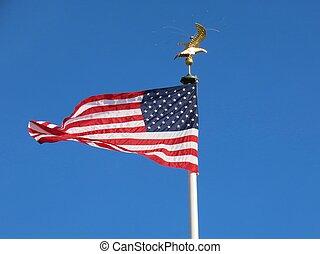 aigle américain, drapeau