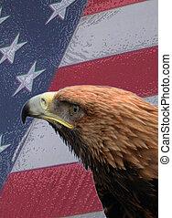 aigle américain, et, drapeau