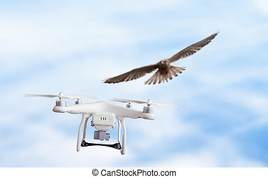 aigle, attaques, voler, bourdon, dans plein vol