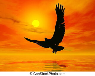 aigle, -, coucher soleil, render, 3d