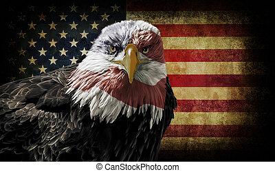 aigle, drapeau, chauve, grunge, américain