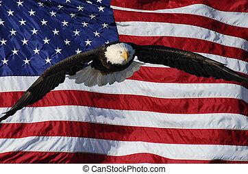 aigle, drapeau, voler