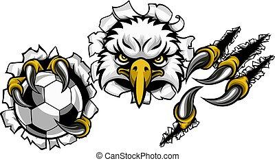 aigle, fond, football, dessin animé, déchirer, mascotte