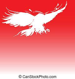 aigle, illustration