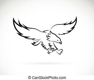 aigle, image, vecteur, conception, fond, blanc