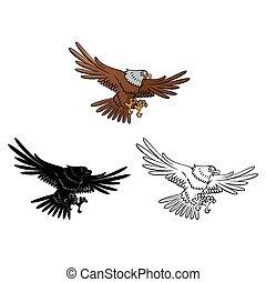 aigle, livre coloration, caracter