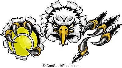 aigle, tennis, fond, déchirure, dessin animé, mascotte