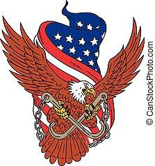 aigle, usa, américain, ailes, drapeau, dessin