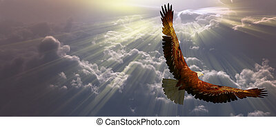 aigle, vol, au-dessus, tyhe, nuages