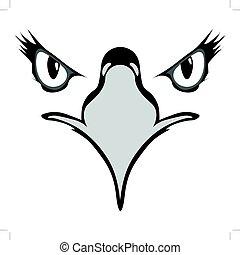 aigle, yeux