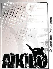 aikido background 2