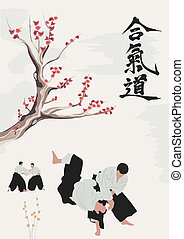 aikido, beroepen