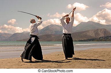aikido, in, japon