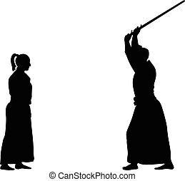 aikido martial art