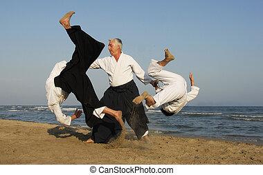 aikido, op het strand
