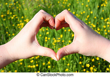 aimer, nature