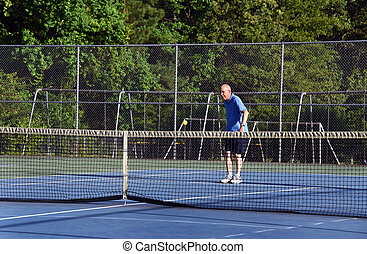 Aiming for a Pickle Ball