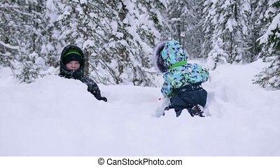 air., joie, jouer, marche, rire, frais, style de vie, sain, parc, snowfall., enfants, snow., premier