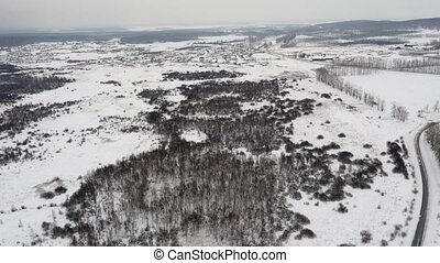 Air Panorama of Winter Forrest