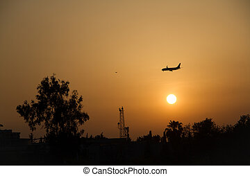 air plane flying over trees and sun set sky background