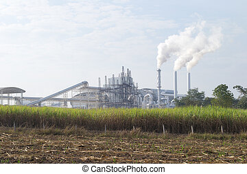 Air pollution from the sugar factory