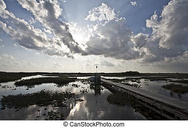 airboat florida everglades swamp