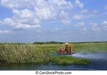airboat, in, everglades, florida, groot, cipres