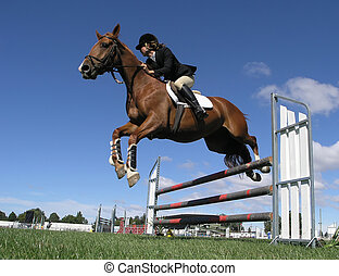 A horse clearing a jump at the Horse of the Year 2007 competition in Hastings New Zealand