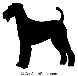 Airedale terrier - Abstract vector illustration of hunting...
