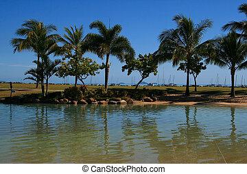 airlie, sandstrand, lagune