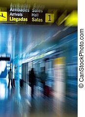 Airline Passengers