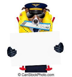 airline pilot flight attendant check in  ticket