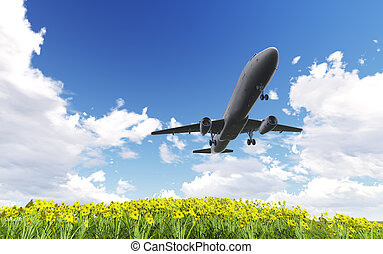 Airliner passing over flowers