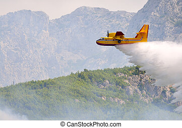 Airplane droping water on fire on island