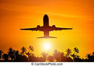 Airplane Flight To Paradise Concept Image with Airliner and...