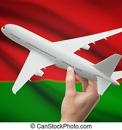Airplane in hand with flag on background - Belarus