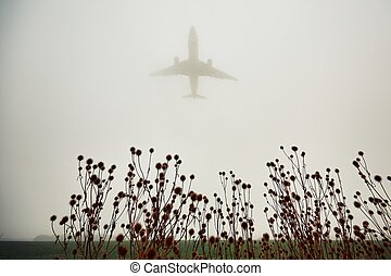 Airplane in thick fog - The airplane is landing during bad ...