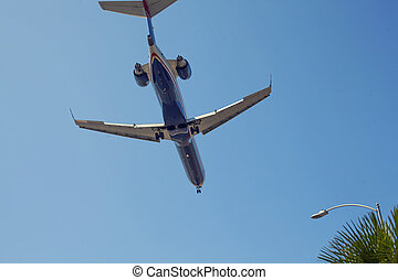Airplane on a sky surrounded with palms