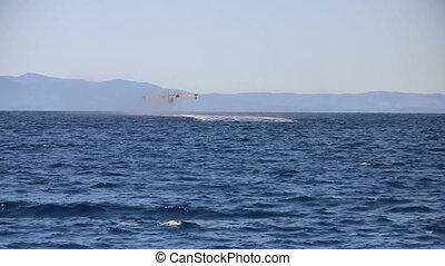 Airplane rises from the sea