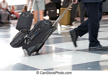 Airport Terminal and Travellers