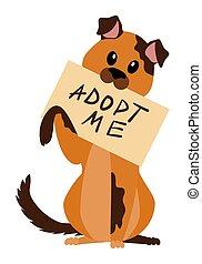 aislado, adoptar, mí, perro, sin hogar, cartel