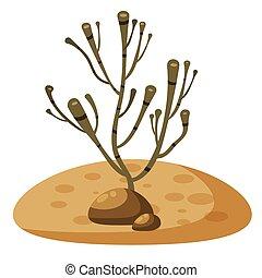 aislado, agua, corales, alga, plano de fondo, debajo, blanco, planta, caricatura, estilo
