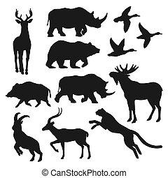 aislado, animales, salvaje, negro, siluetas