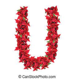 aislado, carta, flores blancas, navidad, rojo