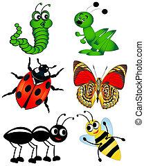aislado, conjunto, insecto, blanco