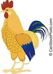 aislado, ilustración, gallo, vector, plano de fondo, blanco...