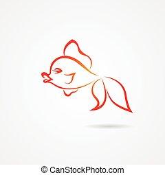 aislado, mano, plano de fondo, goldfish, dibujado, blanco