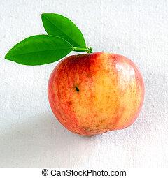 aislado, manzana, con, hojas verdes